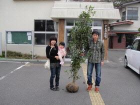 『記念樹交付事業』の画像